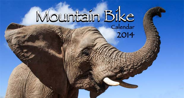 Oakpics 2014 Calendar