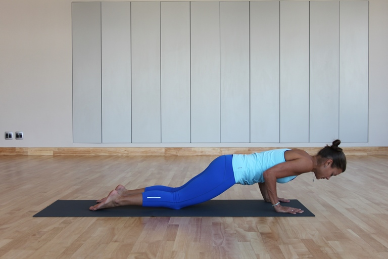 Chaturanga Dandasana (plank) alternative 2.