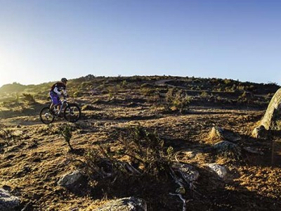 The trails are purpose built through the renosterveld.
