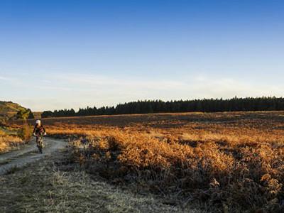 trails-banner